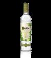 Ketel One Botantical Cucumber and Mint | Spirit Store