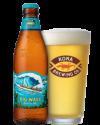 Kona Big Wave Golden Ale 24 x 355ml